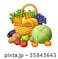 くだもの フルーツ 実のイラスト 35843643