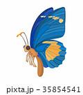 蝶 ブルー 青のイラスト 35854541