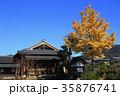 秋 銀杏 お寺の写真 35876741