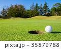 ゴルフボール パッティンググリーン 35879788