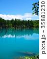 6月の青い池 美瑛 35881230