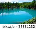 6月の青い池 美瑛 35881232