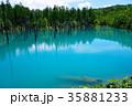6月の青い池 美瑛 35881233