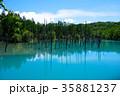 6月の青い池 美瑛 35881237