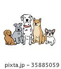 犬 おすわり イラスト 35885059