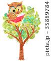 木の上で読書するフクロウ 35889784