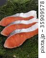 鮭 切り身 銀鮭の写真 35909578