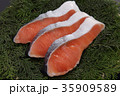 鮭 切り身 銀鮭の写真 35909589
