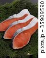 鮭 切り身 銀鮭の写真 35909590