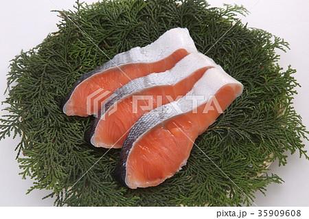 鮭の切り身 35909608