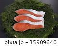 鮭 切り身 銀鮭の写真 35909640