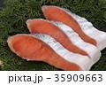 鮭 切り身 銀鮭の写真 35909663