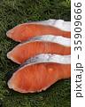 鮭 切り身 銀鮭の写真 35909666