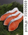 鮭 切り身 銀鮭の写真 35909669