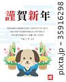 謹賀新年 戌年 戌のイラスト 35916298