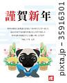 謹賀新年 戌年 戌のイラスト 35916301