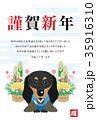 謹賀新年 戌年 戌のイラスト 35916310