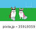 犬とラグビーボールのイラストはがきテンプレート 35919359