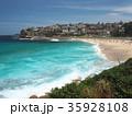 シドニーのコースタルウォーク ブロンテビーチ 35928108