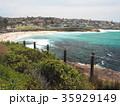 シドニーのコースタルウォーク ブロンテビーチ 35929149