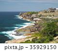 シドニーのコースタルウォーク ウェイブレイ墓地 35929150