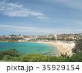 シドニーのコースタルウォーク クージービーチ 35929154
