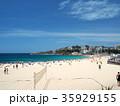 シドニーのコースタルウォーク クージービーチ 35929155