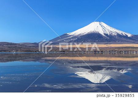 山中湖_薄氷と逆富士 35929855