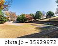 秋 紅葉 公園の写真 35929972