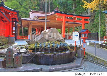 九頭竜神社(箱根神社) 35951746