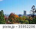 秋 紅葉 秋晴れの写真 35952206