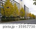 松戸市 和名ヶ谷周辺の風景 35957730