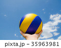 volleyball 35963981