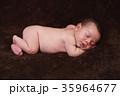 ベビー 赤ちゃん 赤ん坊の写真 35964677