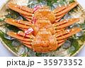 ズワイガニ 食材 35973352