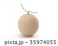 メロン マスクメロン 果物の写真 35974055