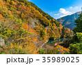 《山梨県》多摩川上流・秋の風景 35989025