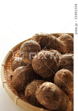 里芋の写真素材 [35991509] - PIXTA