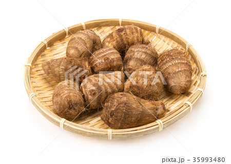 里芋の写真素材 [35993480] - PIXTA