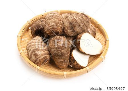 里芋の写真素材 [35993497] - PIXTA
