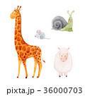 きりん キリン かたつむりのイラスト 36000703