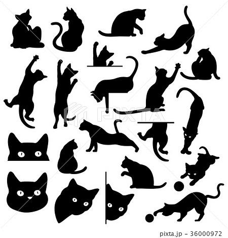 可愛いネコのイラストのイラスト素材 36000972 Pixta