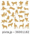 動物 犬 哺乳類のイラスト 36001182