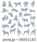 動物 犬 哺乳類のイラスト 36001183