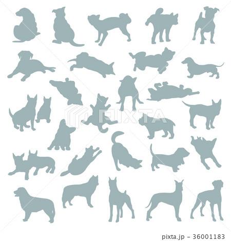 イヌのイラスト 36001183