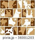 動物 犬 哺乳類のイラスト 36001203