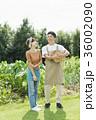 シェフ 畑  ビストロ 36002090