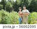 男性 女性 シェフの写真 36002095