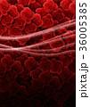 背景素材 薔薇 ラインのイラスト 36005385