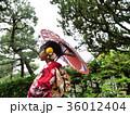 番傘をさした着物姿の女性 振袖 京都観光イメージ 36012404